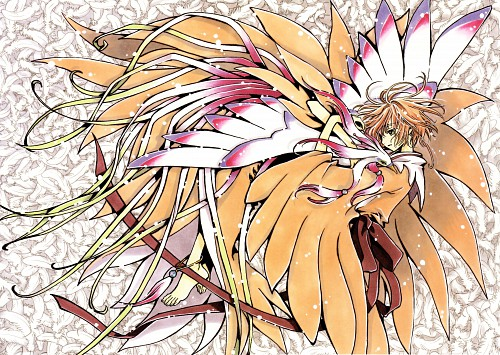 CLAMP, Bee Train, Tsubasa Reservoir Chronicle, Sakura Kinomoto