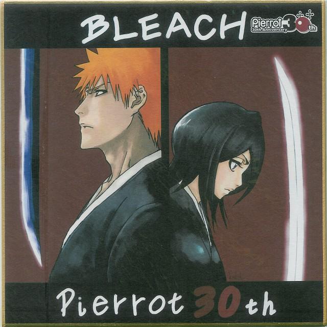 Studio Pierrot, Bleach, Rukia Kuchiki, Ichigo Kurosaki