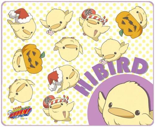 Akira Amano, Katekyo Hitman Reborn!, Hibird