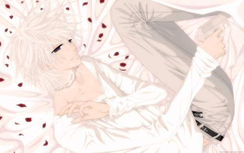 Matsuri Hino, Vampire Knight, Zero Kiryuu, Vector Art Wallpaper