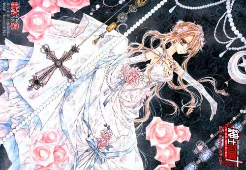 Arina Tanemura, Shinshi Doumei Cross, Haine Otomiya