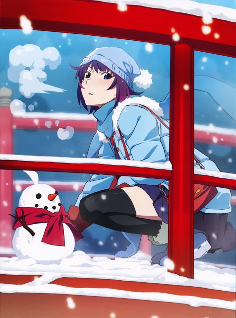 Shaft (Studio), Bakemonogatari, Hitagi Senjougahara, DVD Cover