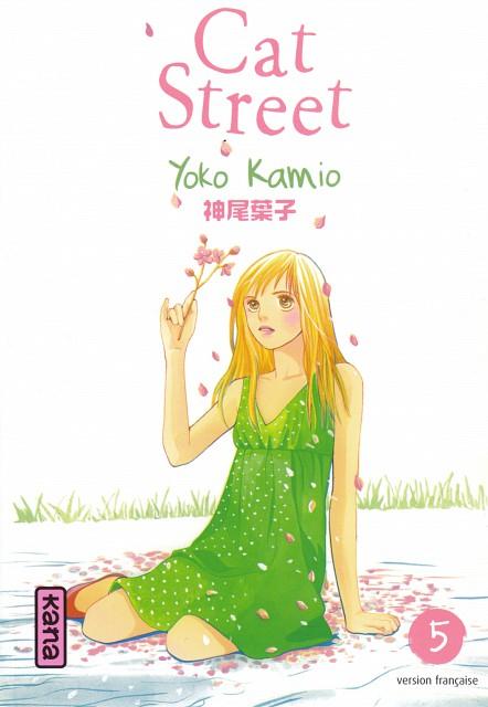 Yoko Kamio, Cat Street, Keito Aoyama, Manga Cover