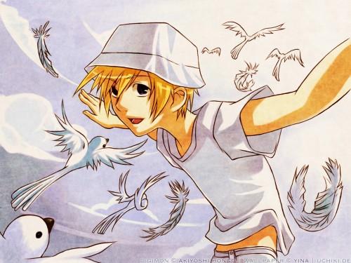 Toei Animation, Digimon Adventure, Takeru Takaishi, Vector Art Wallpaper