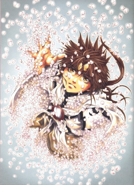 Kazuya Minekura, Saiyuki Gaiden, Salty Dog VI, Son Goku (Saiyuki)