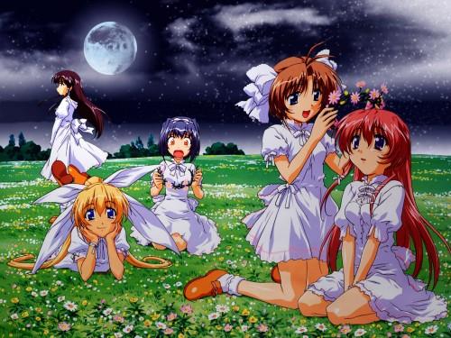 NekoNeko Soft, Mizuiro, Mutsuki Shindou, Kiyoka Onosaki, Asami Kouzu Wallpaper