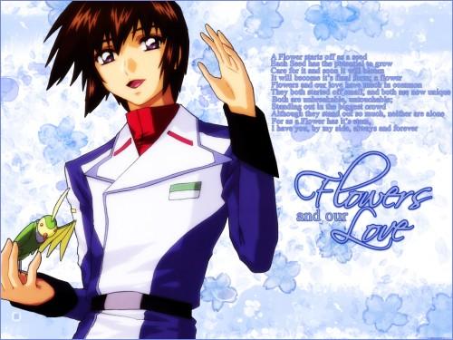 Sunrise (Studio), Mobile Suit Gundam SEED Destiny, Torii (Gundam SEED), Kira Yamato Wallpaper