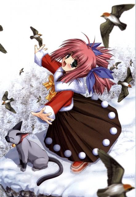 Asuka Pyon, Kobuichi, Studio Mebius, Snow Art Works, Snow (Visual Novel)