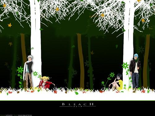 Kubo Tite, Studio Pierrot, Bleach, Hiyori Sarugaki, Grimmjow Jeagerjaques Wallpaper