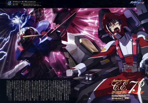 Mobile Suit Gundam SEED Destiny, Shinn Asuka