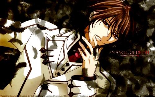 Matsuri Hino, Studio DEEN, Vampire Knight, Kaname Kuran Wallpaper
