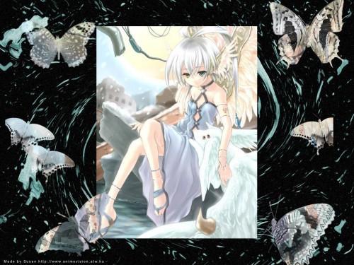 Izuru Nekou Wallpaper