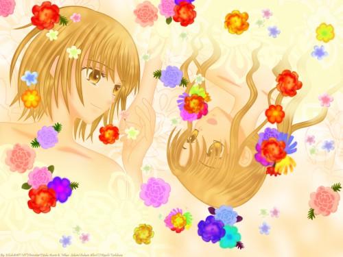 Tachibana Higuchi, Group TAC, Gakuen Alice, Yuka Azumi, Mikan Sakura Wallpaper