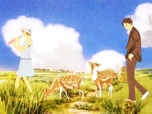 Tomoko Ninomiya, Nodame Cantabile, Shinichi Chiaki, Megumi Noda Wallpaper