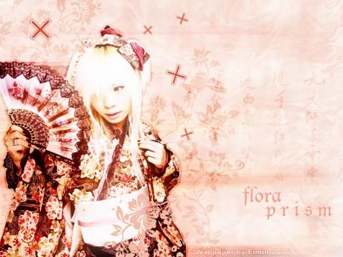 Bou (J-Pop Idol) Wallpaper