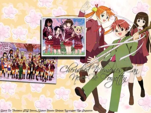 Ken Akamatsu, Mahou Sensei Negima!, Sayo Aisaka, Setsuna Sakurazaki, Evangeline A.K. McDowell Wallpaper
