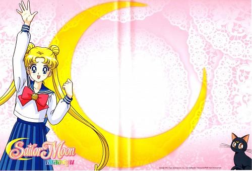 Marco Albiero, Bishoujo Senshi Sailor Moon, Luna, Usagi Tsukino, DVD Cover