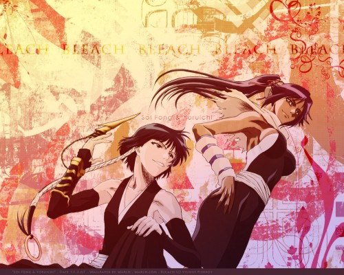 Kubo Tite, Studio Pierrot, Bleach, Soi Fong, Yoruichi Shihouin Wallpaper