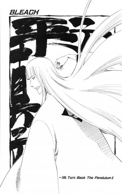 Kubo Tite, Bleach, Shinji Hirako