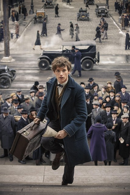 Warner Bros., Fantastic Beasts, Newt Scamander
