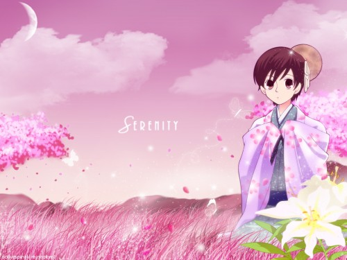 Hatori Bisco, BONES, Ouran High School Host Club, Haruhi Fujioka Wallpaper