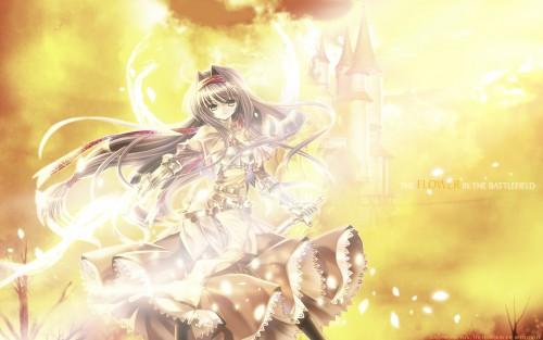 Capura Lin, Ragnarok Online, Swordman (Ragnarok Online) Wallpaper