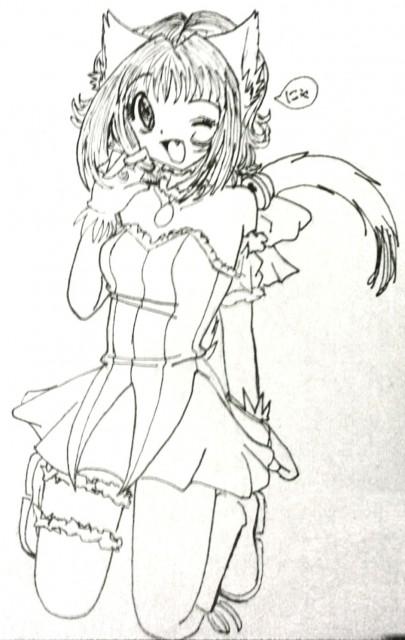 Mia Ikumi, Studio Pierrot, Tokyo Mew Mew, Ichigo Momomiya, Member Art