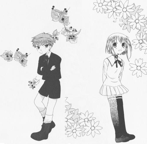 Natsuki Takaya, Fruits Basket, Hiro Sohma, Kisa Sohma