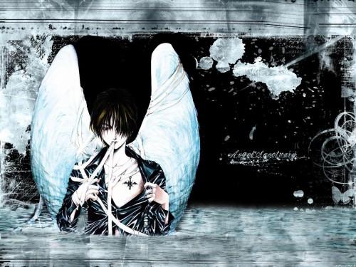 Kaori Yuki, Hal Film Maker, Angel Sanctuary, Setsuna Mudo Wallpaper