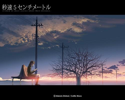 Makoto Shinkai, Five Centimeters Per Second, Akari Shinohara