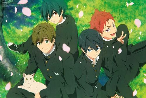 Rie Sezaki, Kyoto Animation, Free!, Ikuya Kirishima, Asahi Shiina