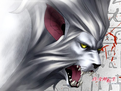Kazuma Kaneko, Shin Megami Tensei Wallpaper