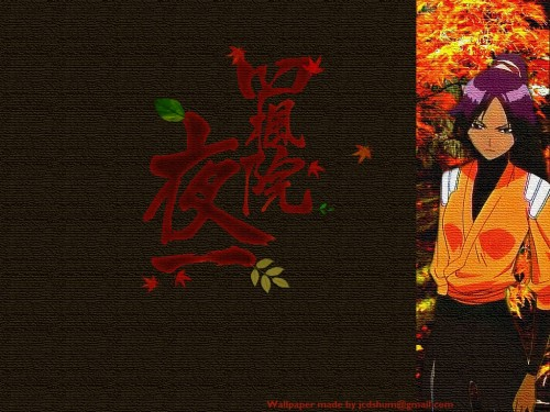 Kubo Tite, Studio Pierrot, Bleach, Yoruichi Shihouin Wallpaper