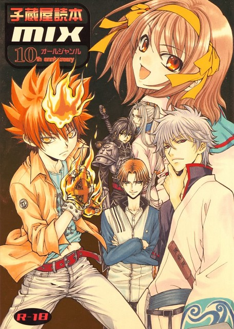 Tsuda Mikiyo, Prince of Tennis, The Melancholy of Suzumiya Haruhi, Katekyo Hitman Reborn!, Gintama