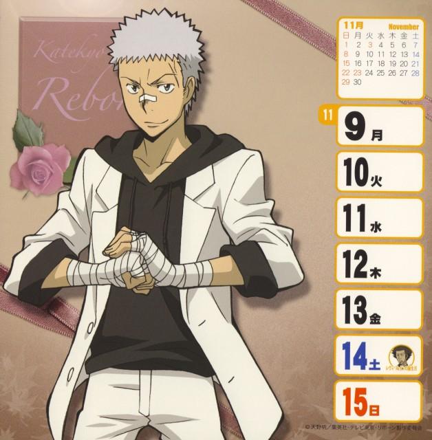 Akira Amano, Artland, Katekyo Hitman Reborn!, Ryohei Sasagawa, Calendar