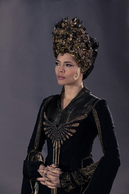 Warner Bros., Fantastic Beasts, Seraphina Picquery