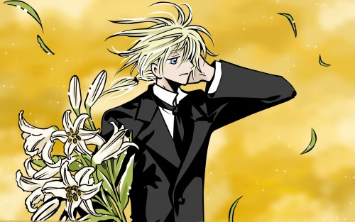 CLAMP, Bee Train, Tsubasa Reservoir Chronicle, Fay D. Flourite, Vector Art