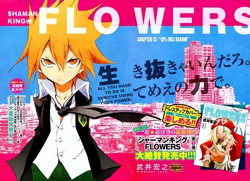 Hiroyuki Takei, Shaman King Flowers
