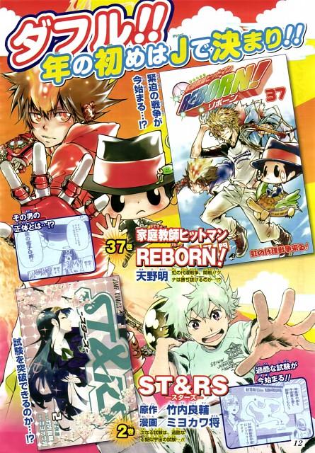 Miyokawa Masaru, Akira Amano, Katekyo Hitman Reborn!, St&rs, Dino Cavallone
