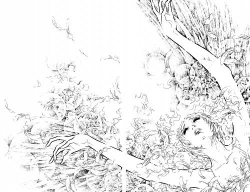Kyoko Ariyoshi, Swan (Series), Lilliana Maximova