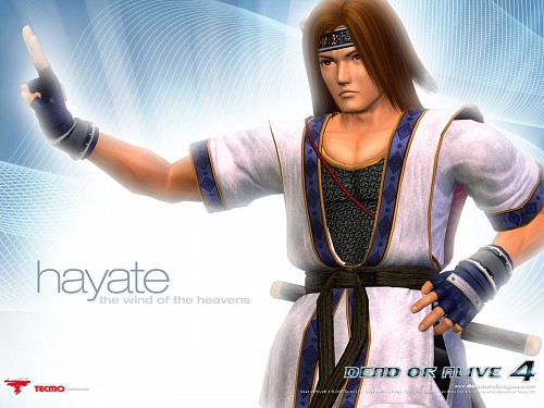 Tecmo, Dead or Alive, Hayate (Dead or Alive), Official Wallpaper