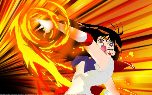 Toei Animation, Bishoujo Senshi Sailor Moon, Sailor Mars, Rei Hino, Vector Art Wallpaper