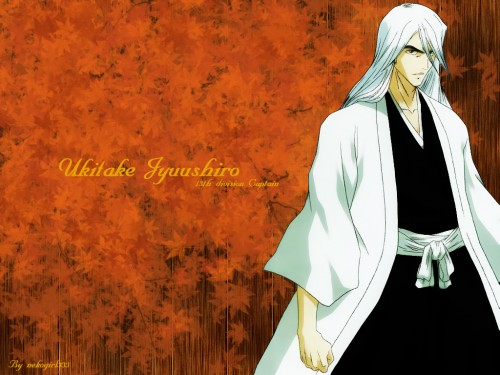 Kubo Tite, Studio Pierrot, Bleach, Juushirou Ukitake Wallpaper