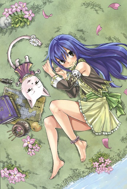 Hiro Mashima, Satelight, Fairy Tail, Fairy Tail Illustrations: Harvest, Charle