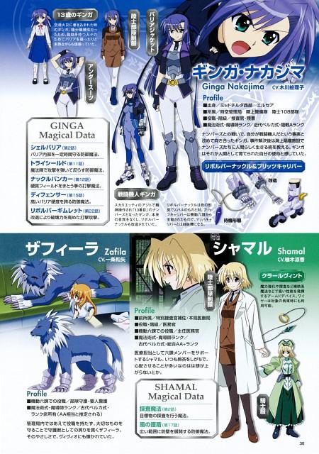 Seven Arcs, Mahou Shoujo Lyrical Nanoha StrikerS, Zafira, Shamal, Ginga Nakajima