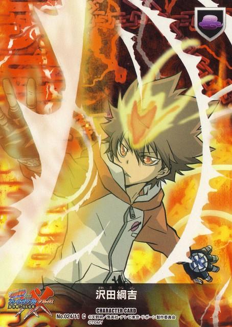 Akira Amano, Katekyo Hitman Reborn!, Tsunayoshi Sawada, Trading Cards
