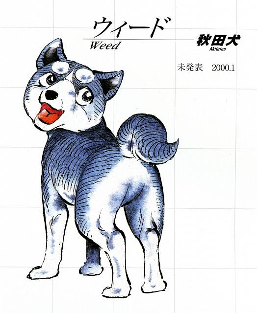 Yoshihiro Takahashi, Ginga: Nagareboshi Gin, Weed (Ginga: Nagareboshi Gin)
