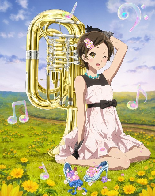 Pony Canyon, Kyoto Animation, Hibike! Euphonium, Hazuki Katou