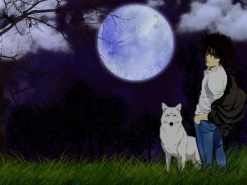 BONES, Wolf's Rain, Kiba (Wolf's Rain) Wallpaper