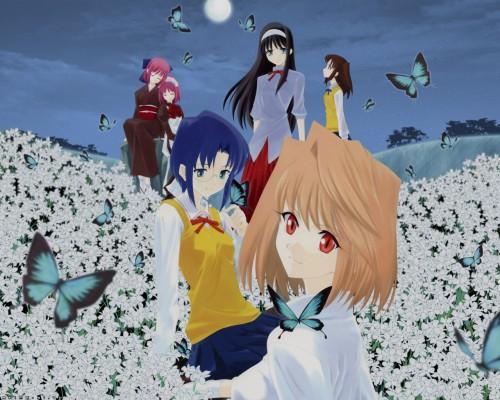 Shingetsutan Tsukihime, Ciel (Shingetsutan Tsukihime), Akiha Tohno, Kohaku (Shingetsutan Tsukihime), Hisui (Shingetsutan Tsukihime) Wallpaper